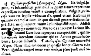 Matthew 9:18 Footnote in Latin in the 1598 New Testament of Theodore Beza