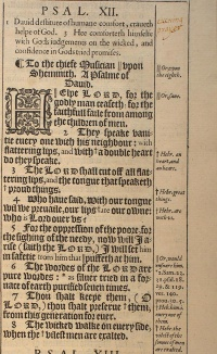 Psalm 12 in the 1611 King James Version